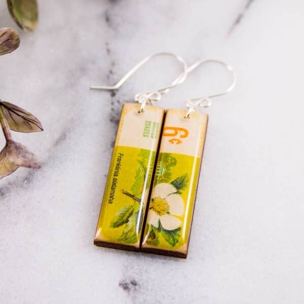 US- Vintage Botanical Franklinia Tree Postage Stamp Earrings
