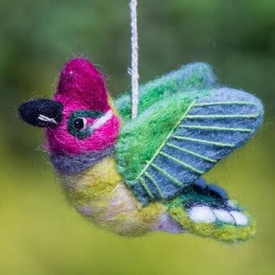 Anna's Hummingbird Woolie Bird