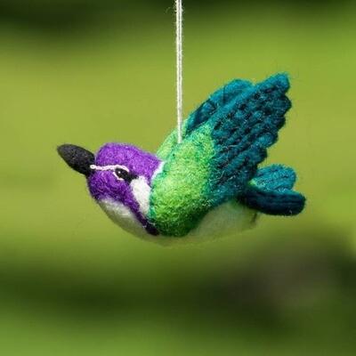 Costas Hummingbird Woolie Bird