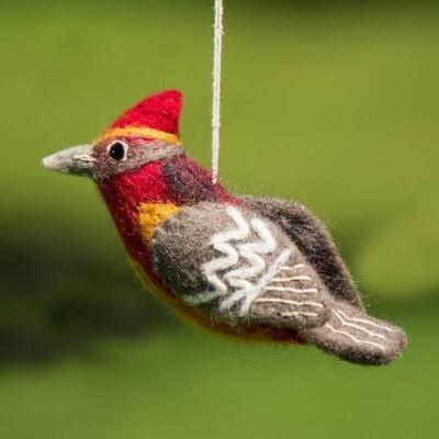 Vermillion Flycatcher Woolie Bird