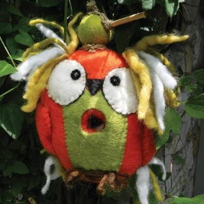 Crazy Owl Birdhouse