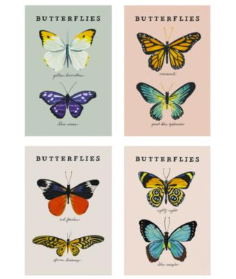 Butterfly Postcards - Set of 8