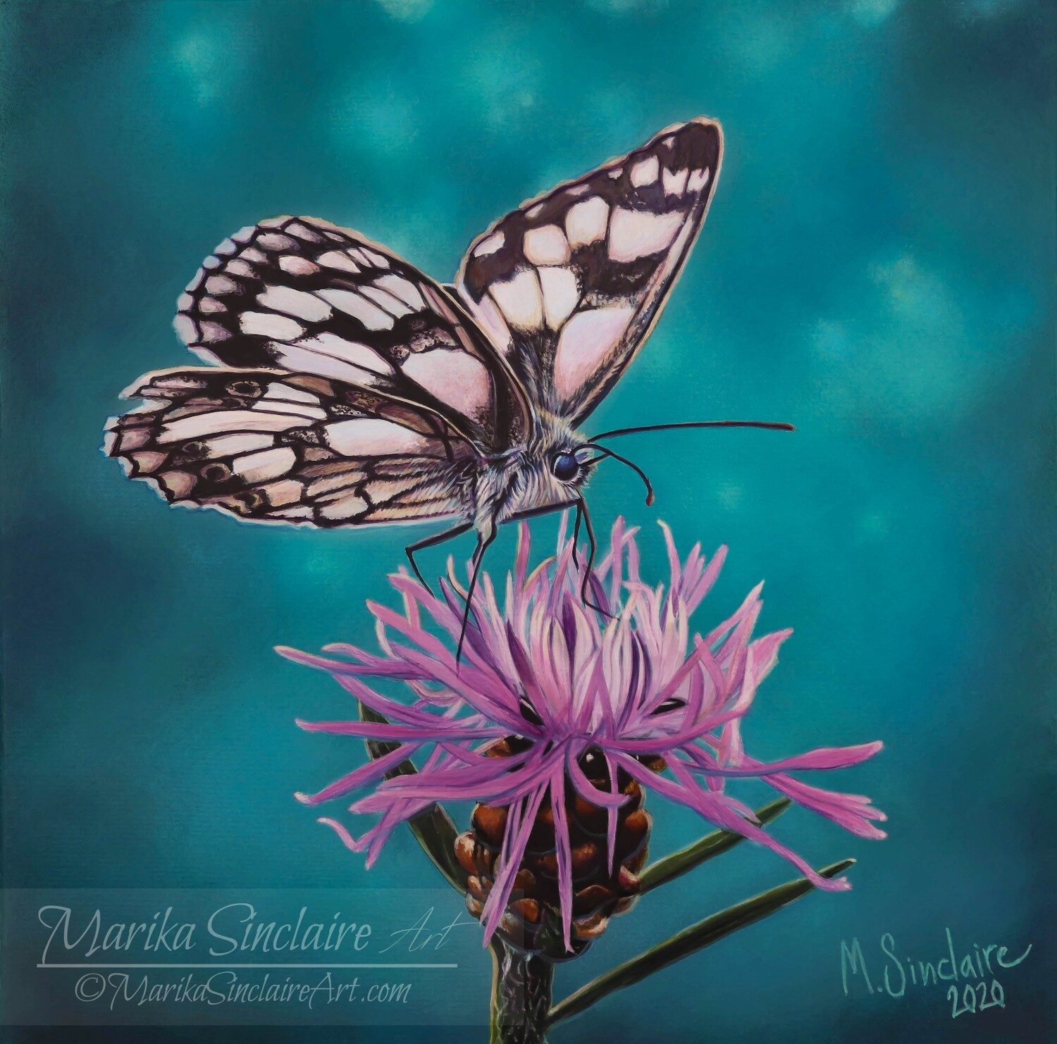 """""""Butterfly on flower"""" Original painting"""