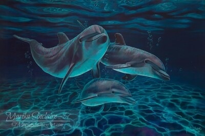 """""""Dolphins under water"""" Original painting"""