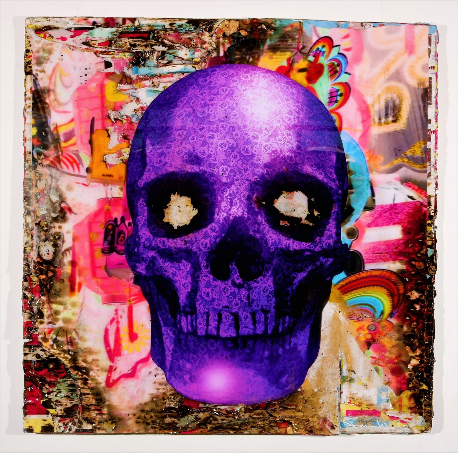 Bram Reijnders purple scull