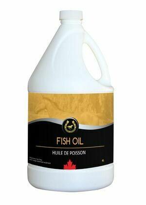 Fish Oil - 4 L