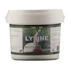 Lysine