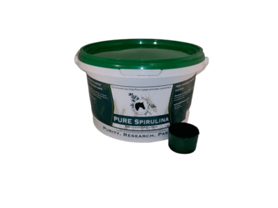 Pure Spirulina by Herbs for Horses