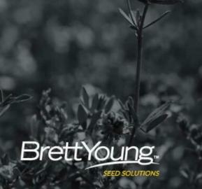 Fleet Meadow Brome - 50Lb