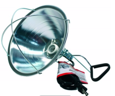 Little Giant Reflector Brooder Lamp With Clamp