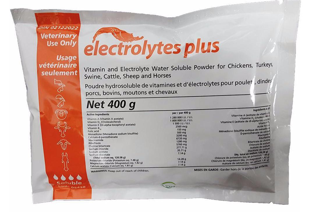 Electrolytes Plus Soluble Powder 400gm