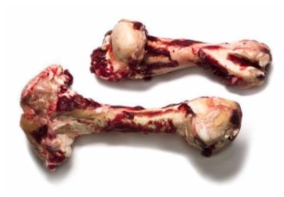 Dino Bones-Pork