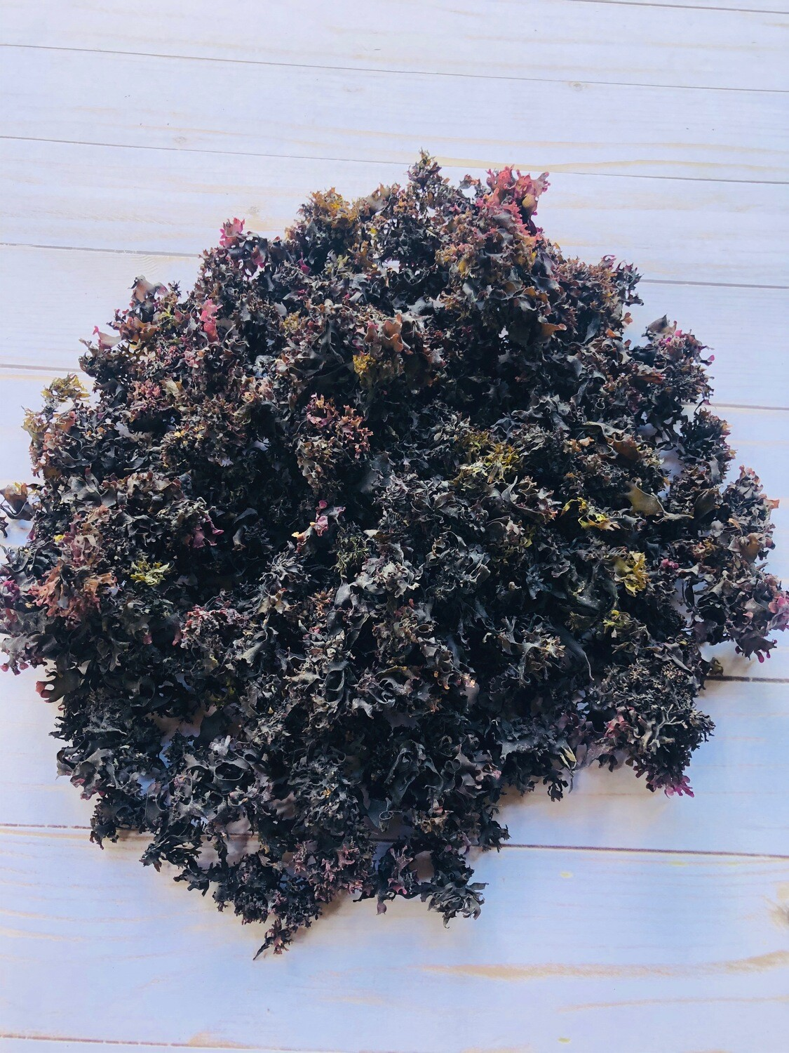 1/2 lbs Wild Crafted Purple Irish Sea Moss (Chondrus Crispus)
