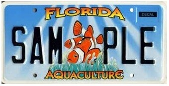 Aquaculture Florida Specialty License Plate