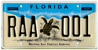Helping Sea Turtles Survive Florida Specialty License Plate