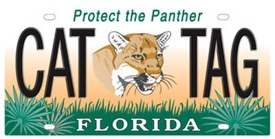Protect The Panther Florida Specialty License Plate