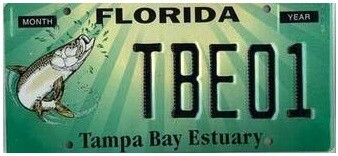 Tampa Bay Estuary Florida Specialty License Plate