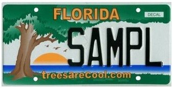 Trees Are Cool Florida Specialty License Plate
