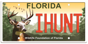 Wildlife Foundation Of Florida Specialty License Plate