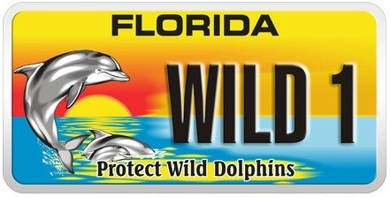 Protect Wild Dolphins Florida Specialty License Plate