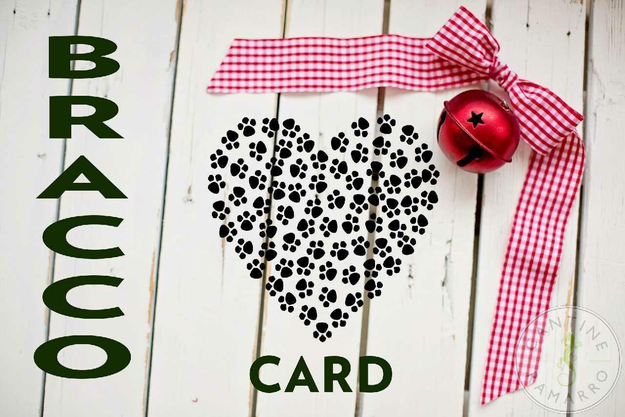 Bracco Card