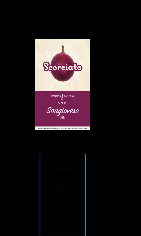 BOX 6 Scorciato 2019