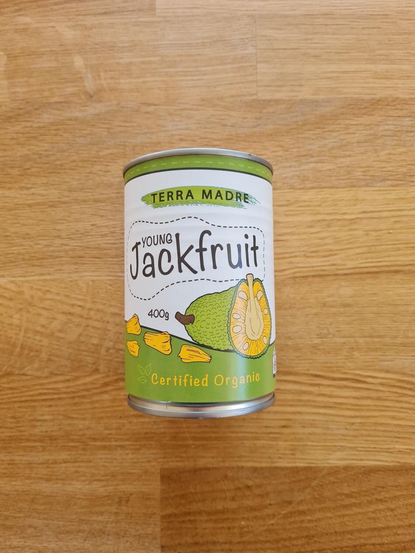 Jackfruit organic 400g
