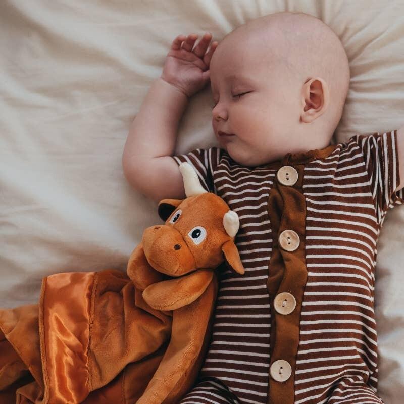 Longhorn Lovey Travel Baby Blanket