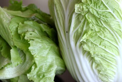 Napa cabbage (bunch)