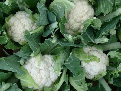 Cauliflower (1 lb)