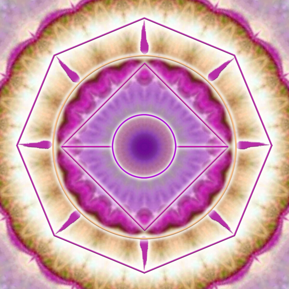 Purple Shining Stars