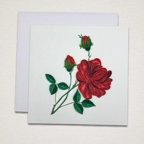 Cartolina 'ROSA'