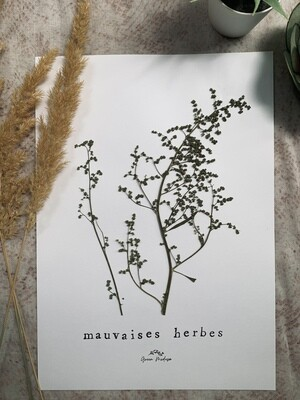 Mauvaises herbes (A4)