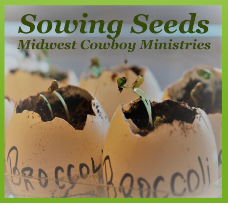 Sowing Seeds CD: 16 Songs
