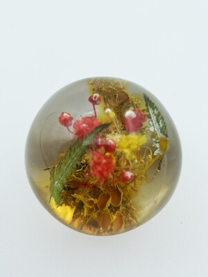 Colombian Botanical Orb Paperweight