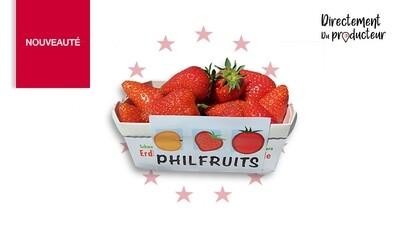 Barquettes de fraises du Valais 250g