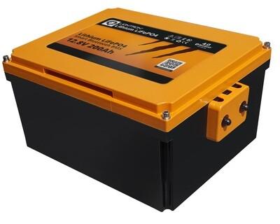 LIONTRON Lithium LiFePO4 LX Smart BMS 12,8V Wohnmobil Untersitz Batterie 12,8V 200Ah