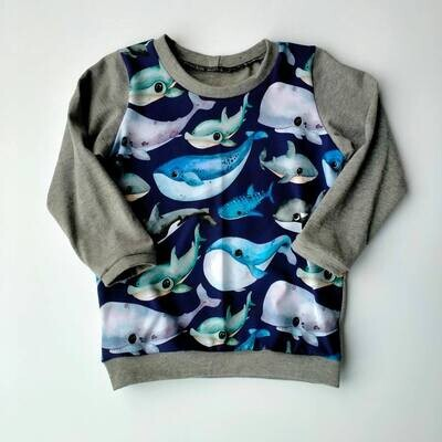 Whale Time Grey