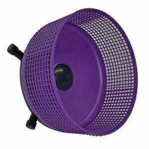 Purple Freedom Wheel