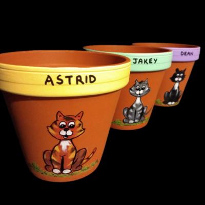 Cat (3 designs)