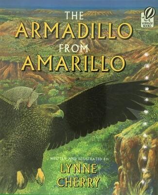 Armadillo From Amarillo Paperback