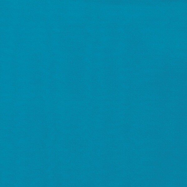 Turquoise Solid Wild Rag