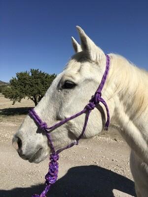 Purple/Multi Rope Halter w/Lead