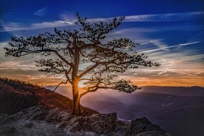 Solstice Sunset Canvas