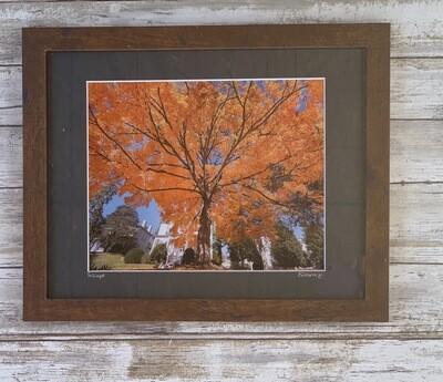Foliage Framed