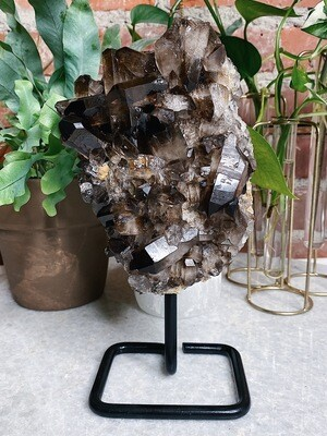 Large Smokey Quartz Cluster On Stand