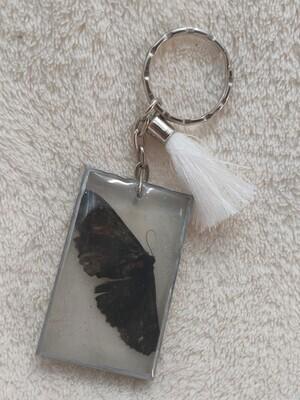 Encapsulated Moth Keyring