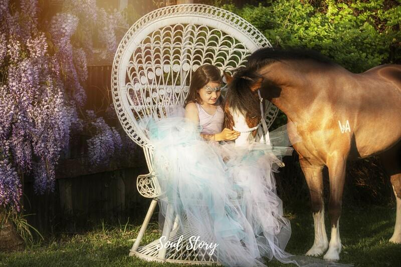 Equine Portrait Shoot Session Gift Voucher