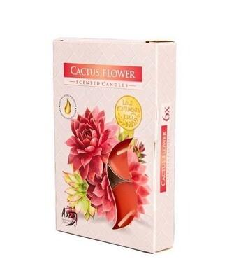 Свечи ароматические в гильзах - Цветок кактуса 6 штук