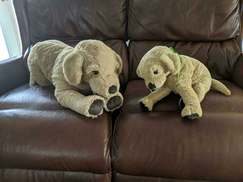 --Large Stuffed Golden